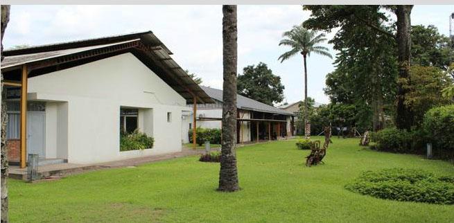 Patio jardin nos espaces institut fran ais de for Jardin zoologique kinshasa
